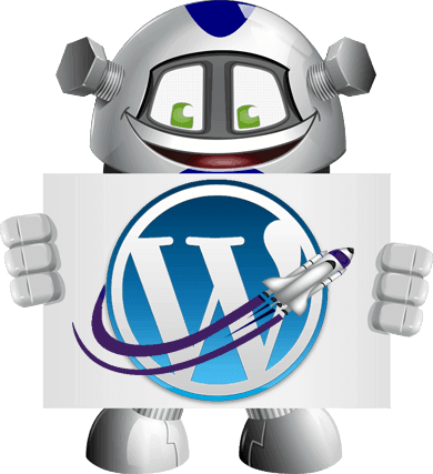 WordPress Optimisation Service