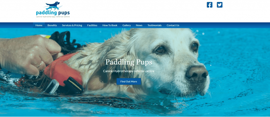 Paddling Pups Canine Hydrotherapy Referral Centre Omagh 20-01-2020 14-00-16
